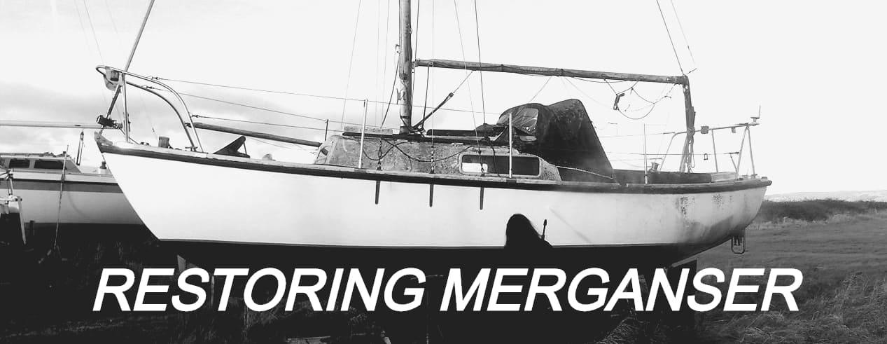 Restoring Merganser